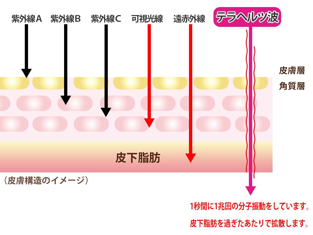 テラヘルツ波は遠赤外線より波長が長い