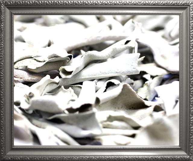 ホワイトセージで浄化済のテラヘルツブレスレット